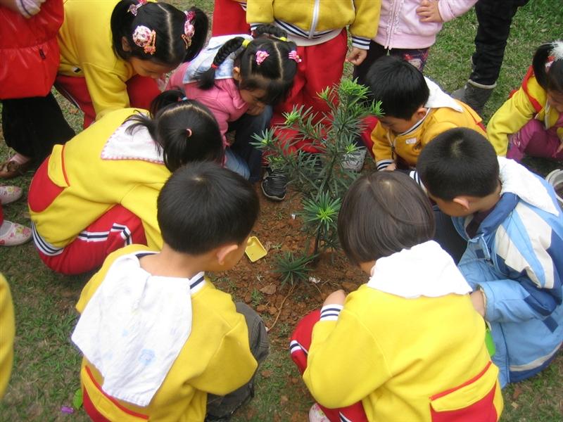 大班小朋友去植树种花草图片